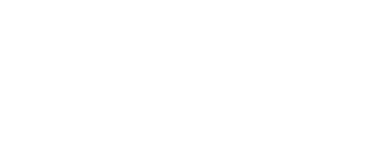 panavision logos