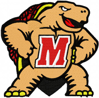 Image result for maryland terrapins