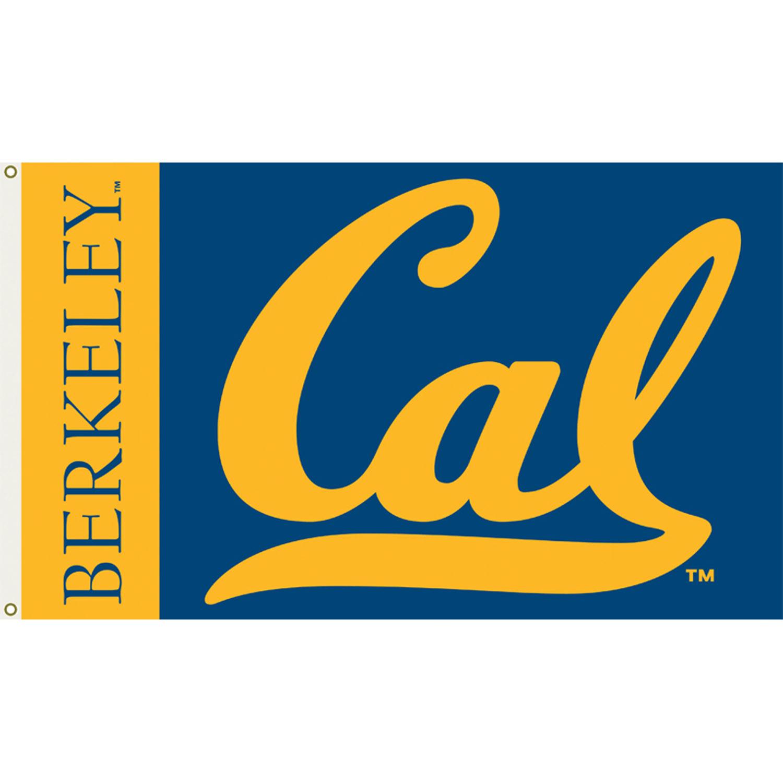 Image result for uc berkeley logo