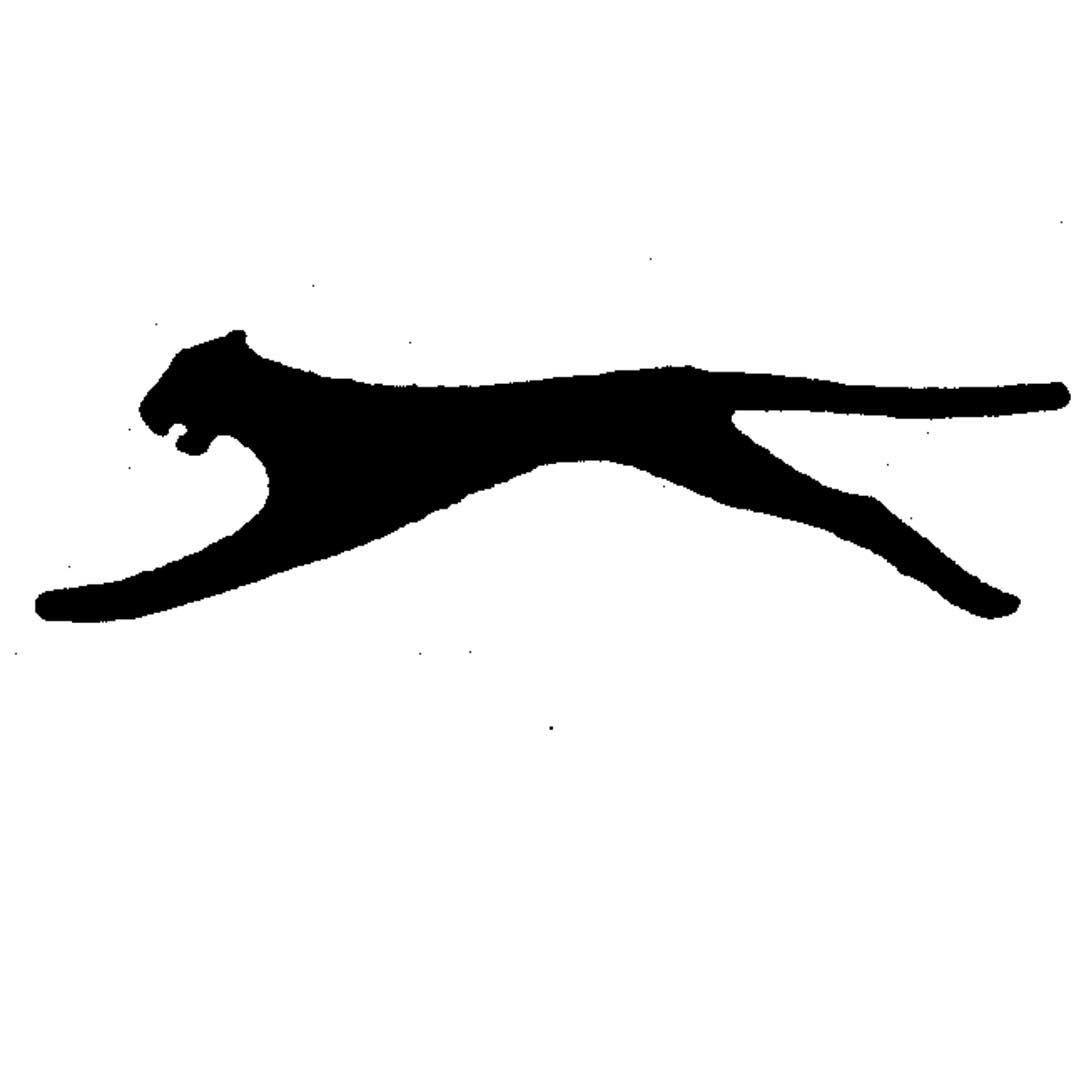 Slazenger Logos