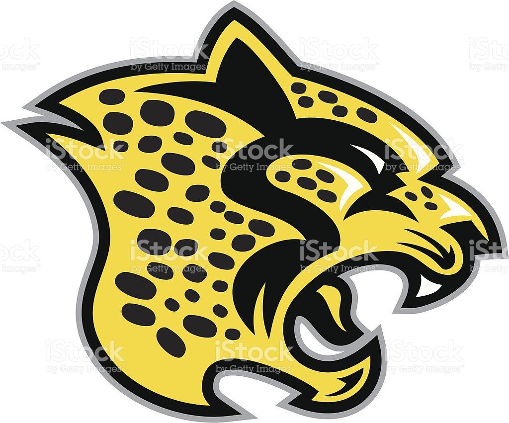 cheetah logos cheetah logos