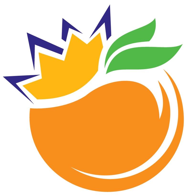 Image result for orange bowl logo