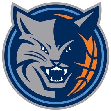 Charlotte Bobcats New Logos