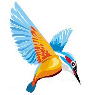 Kingfisher Bird Logos