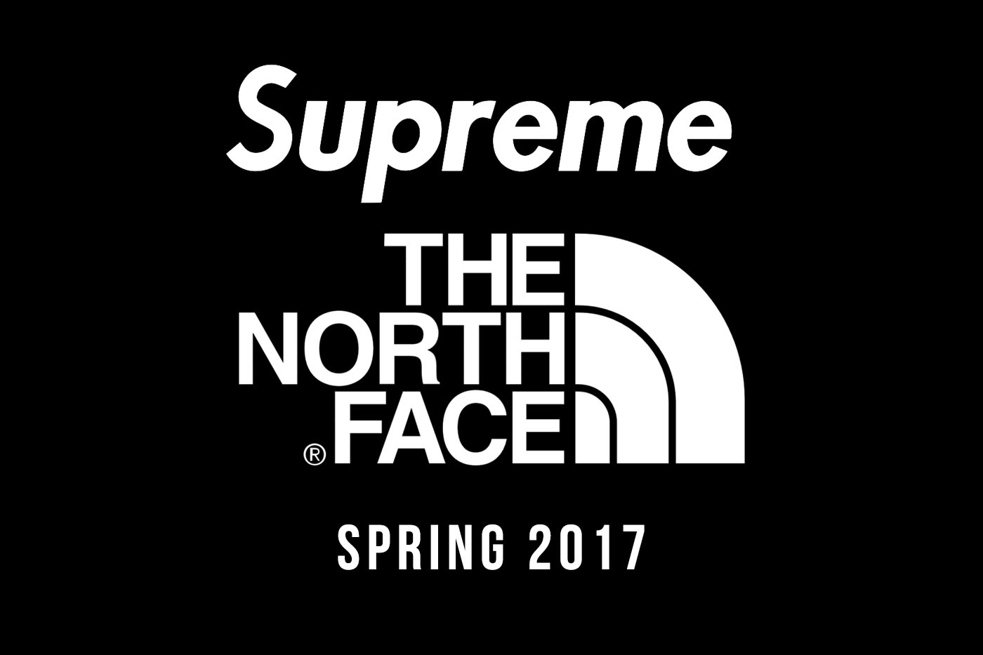 3738c4a65d04 Supreme x The North Face Spring 2017