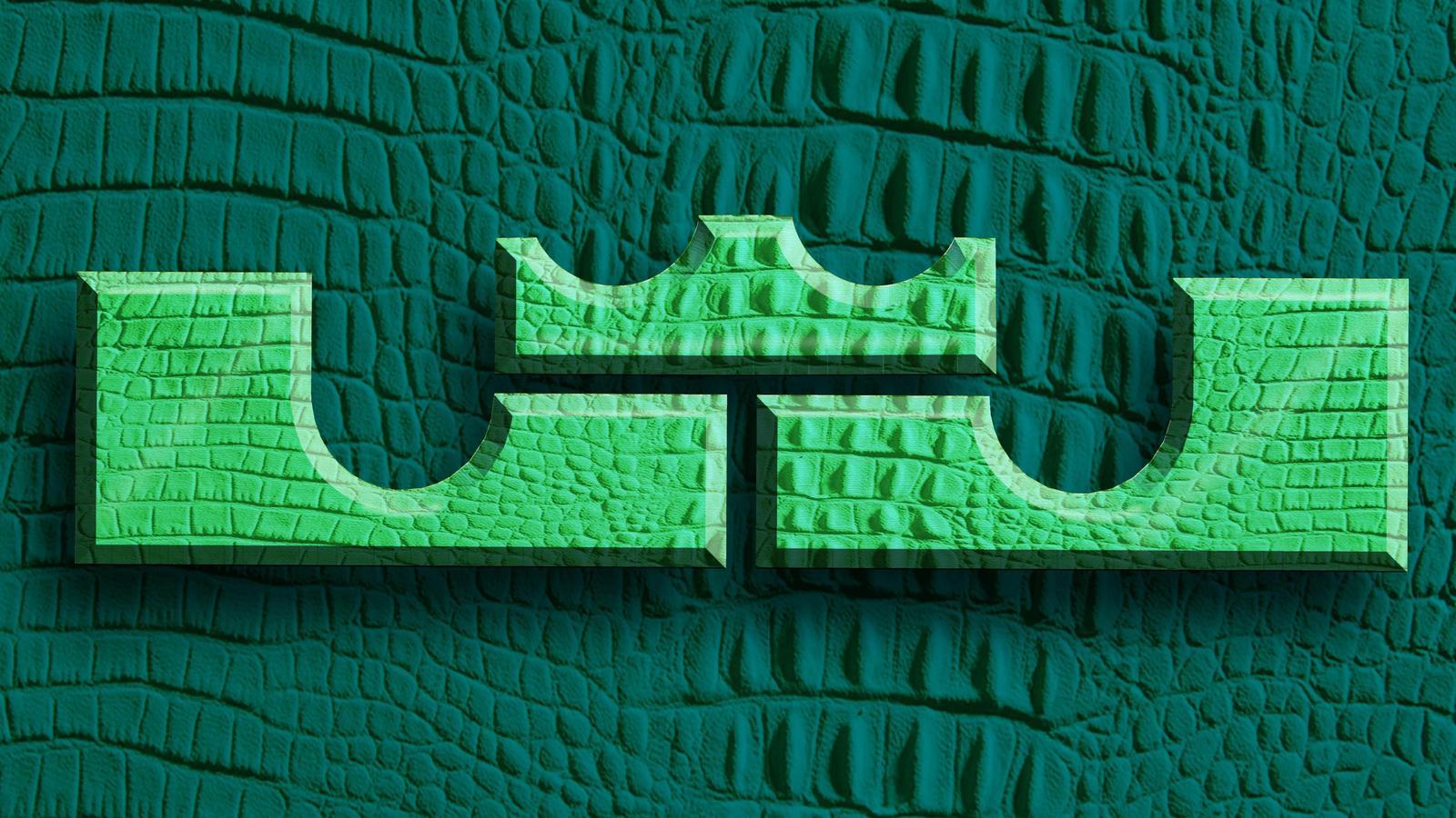 Lebron James Shoes Logos