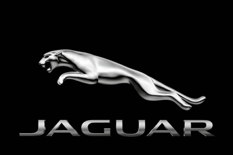 New jaguar logo