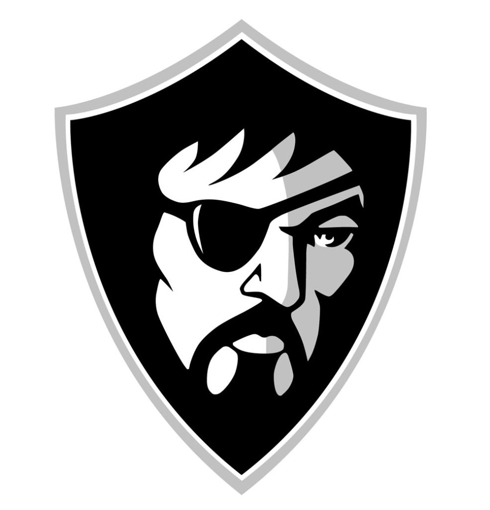 Cool Raiders Logos