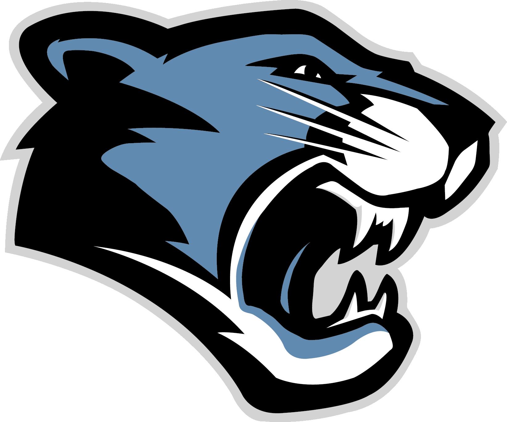 Panthers Logos