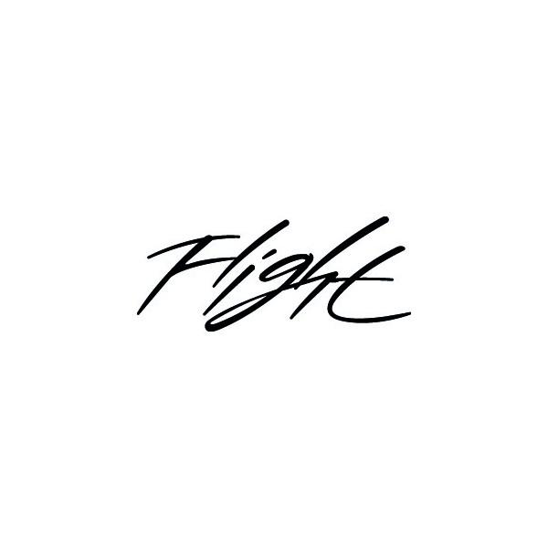 jordan flight logos rh logolynx com Nike Air Jordan Logo Nike Flight Shoes