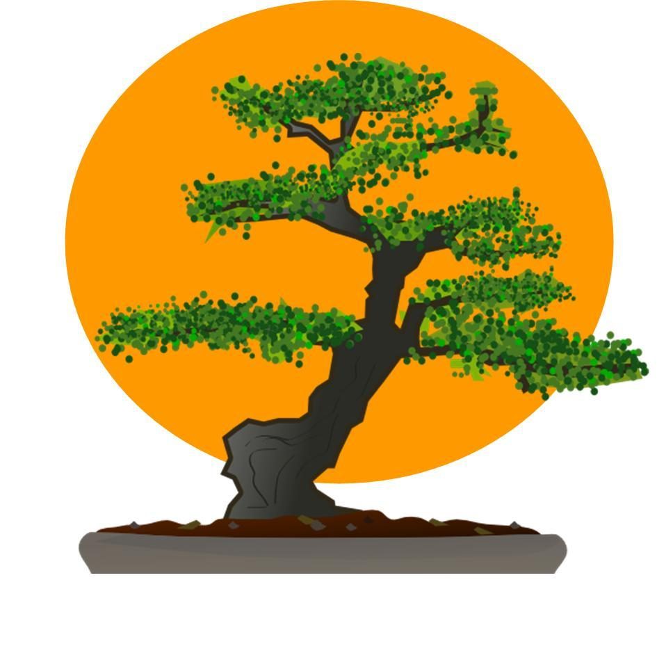 Bonsai Tree Karate Kid Patch Bonsai Tree