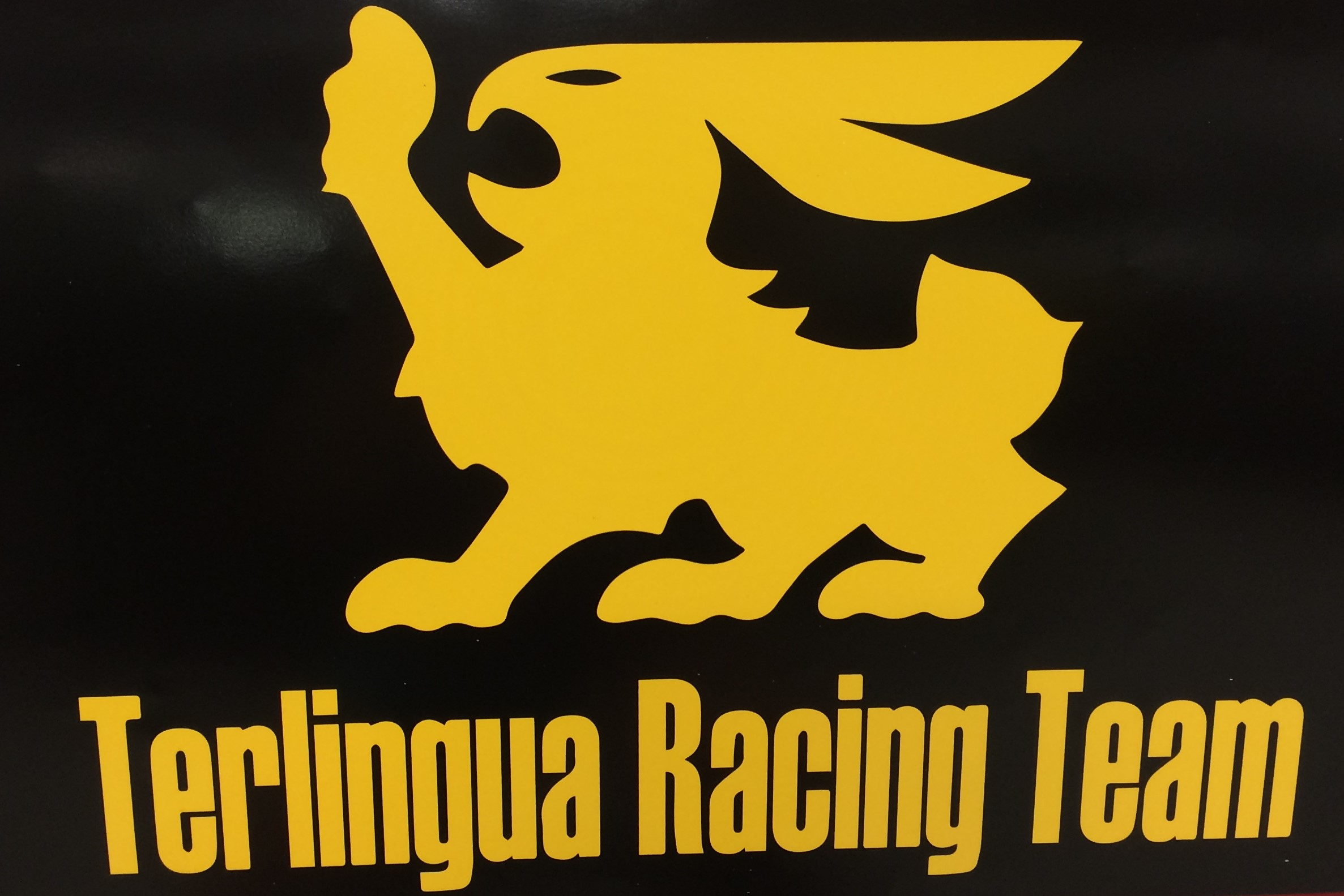 Terlingua racing team Logos