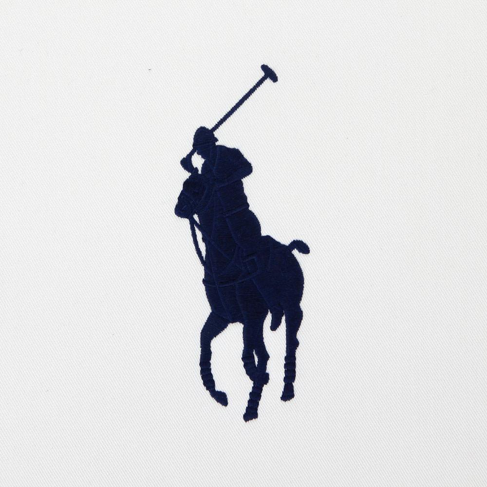 polo logo vector