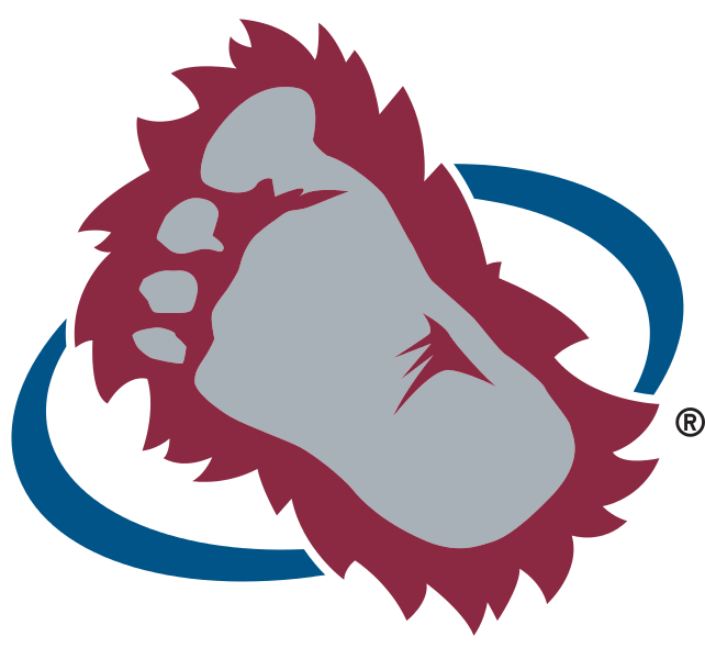Image result for avalanche foot logo