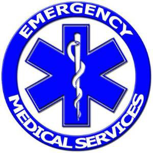fire ems logos rh logolynx com ems logo ems log on