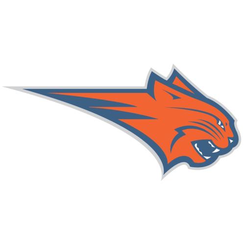 Charlotte Bobcats Logos