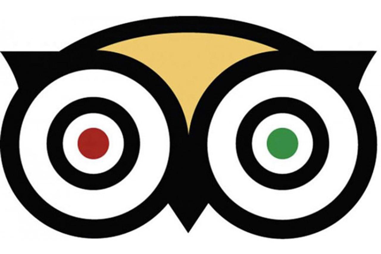owl eyes logos