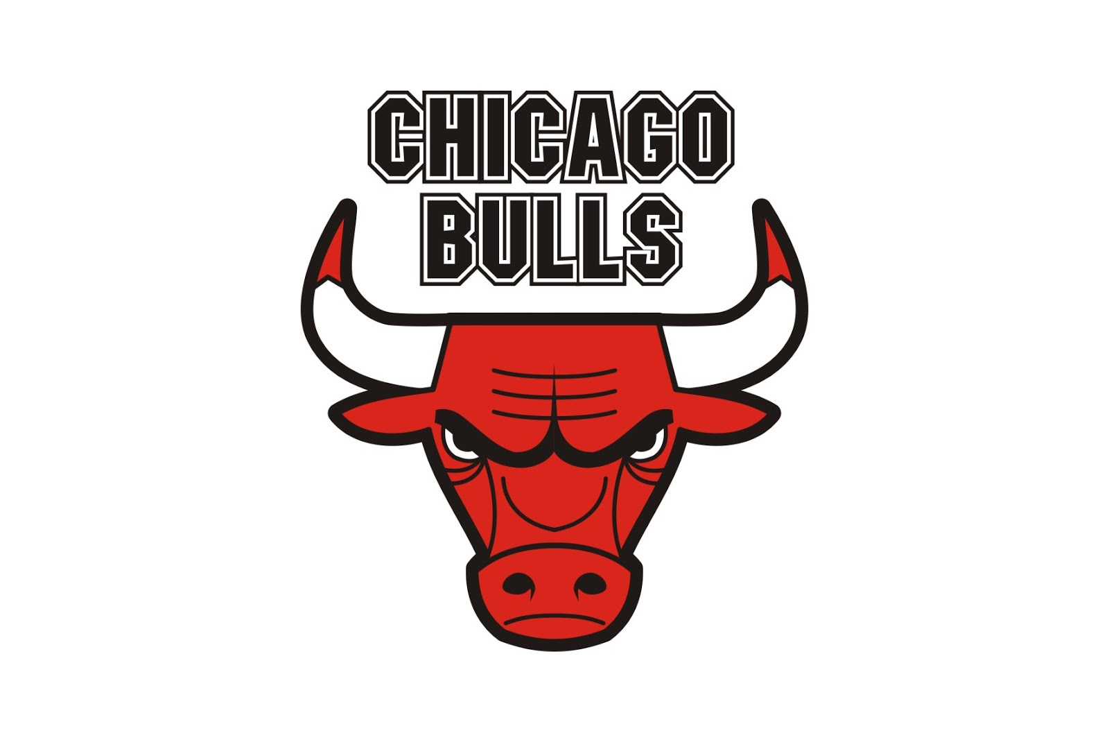 The Bulls Logos