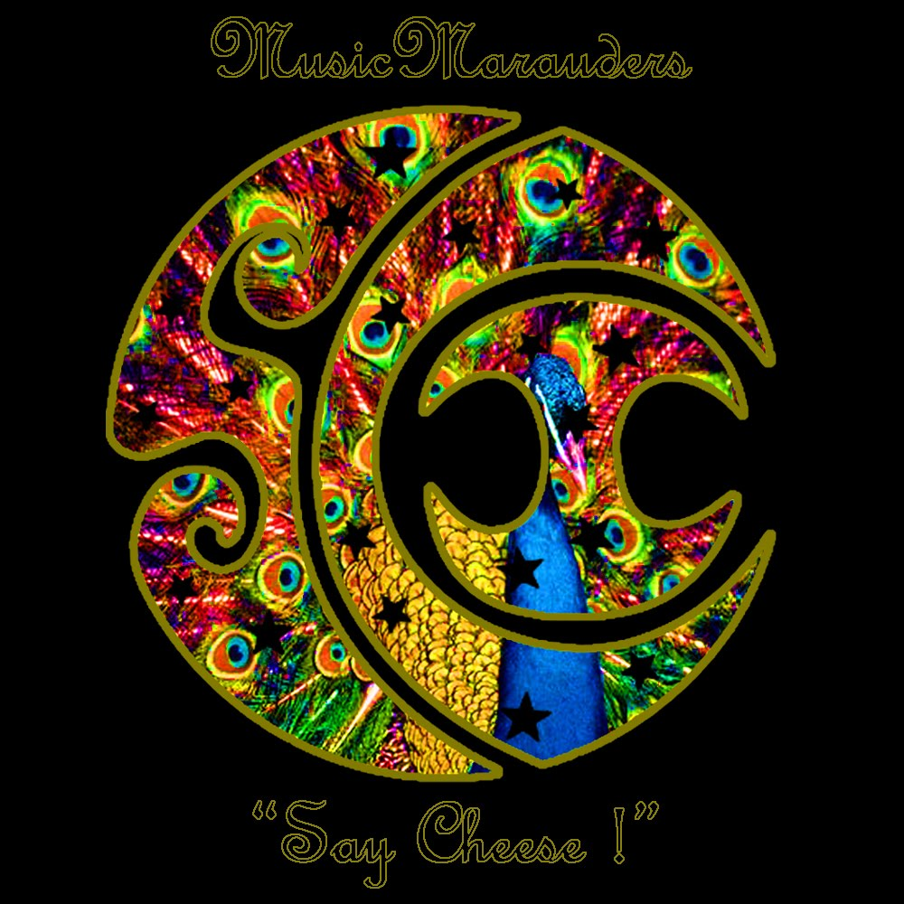 String Cheese Incident Logos