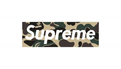 e32ac699 Supreme x bape box Logos